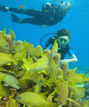 scuba_diving_1